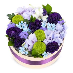 꽃상자 p512