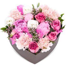 꽃상자 p515