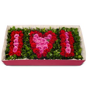 꽃상자p1004