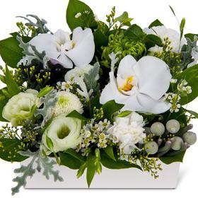 꽃상자 p3110
