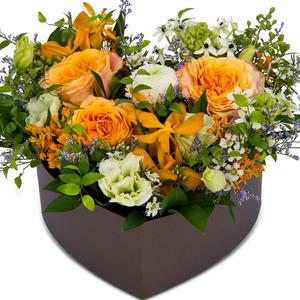 꽃상자 p3120