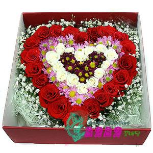 꽃박스 p203